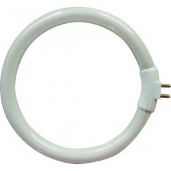 lampadina fluorescente per le004 4 pin