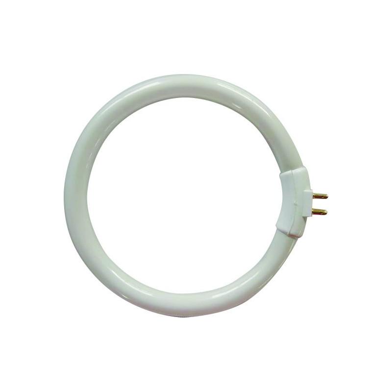 Lampadina fluorescente per le004 4 pin 22987 Lampade con lente Velamp