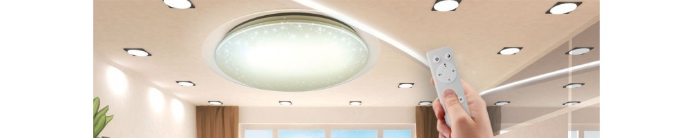 Ceiling lamps and panels