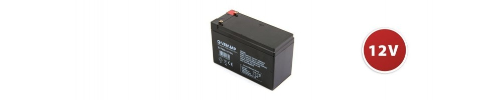 Batteries rechargeables au plomb 12V